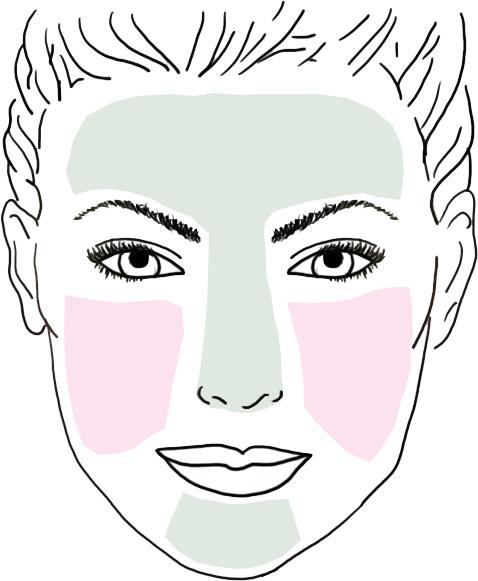 peau grasse definition